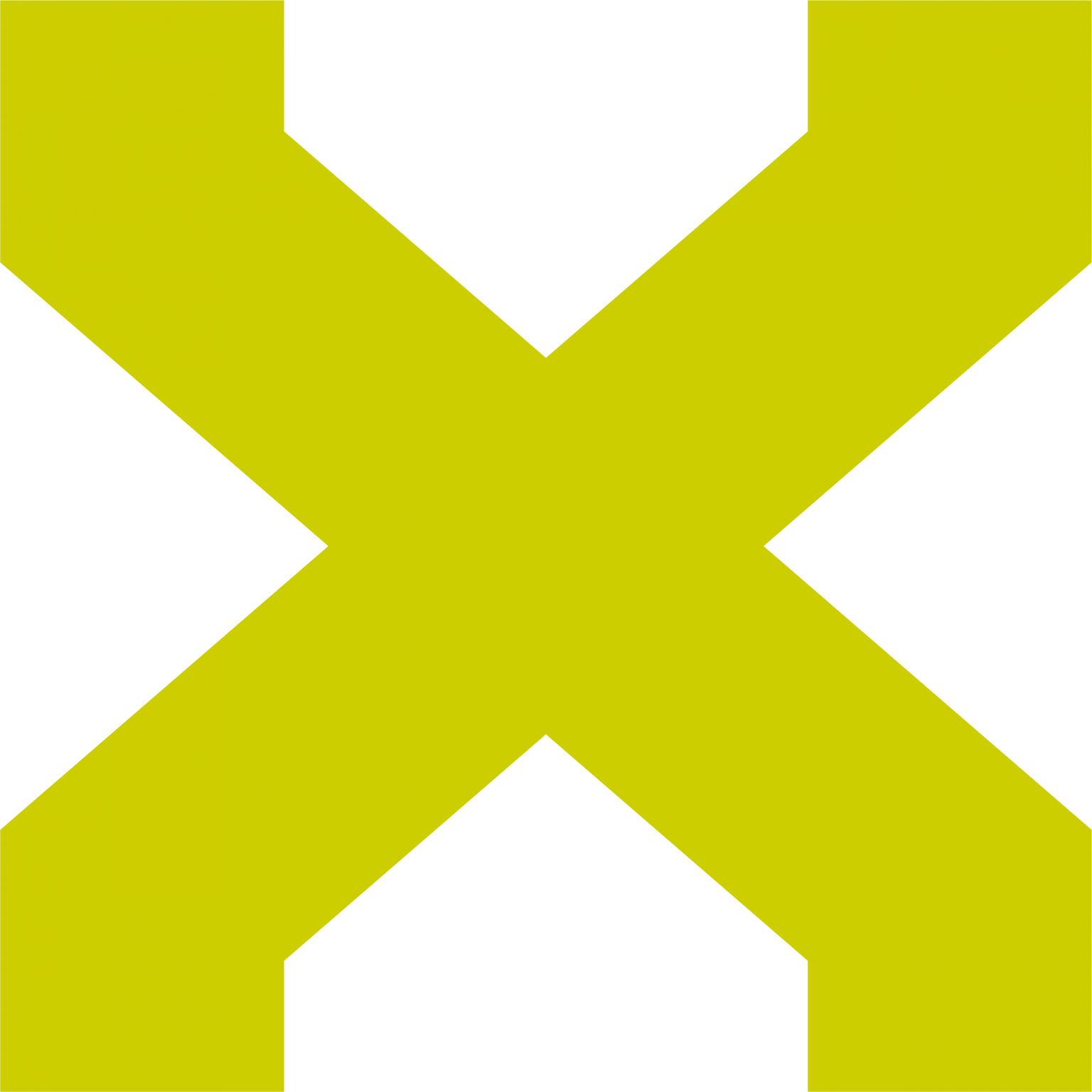 an.x ltd. logo