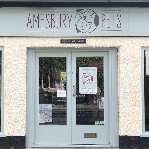 amesbury pets graphic design