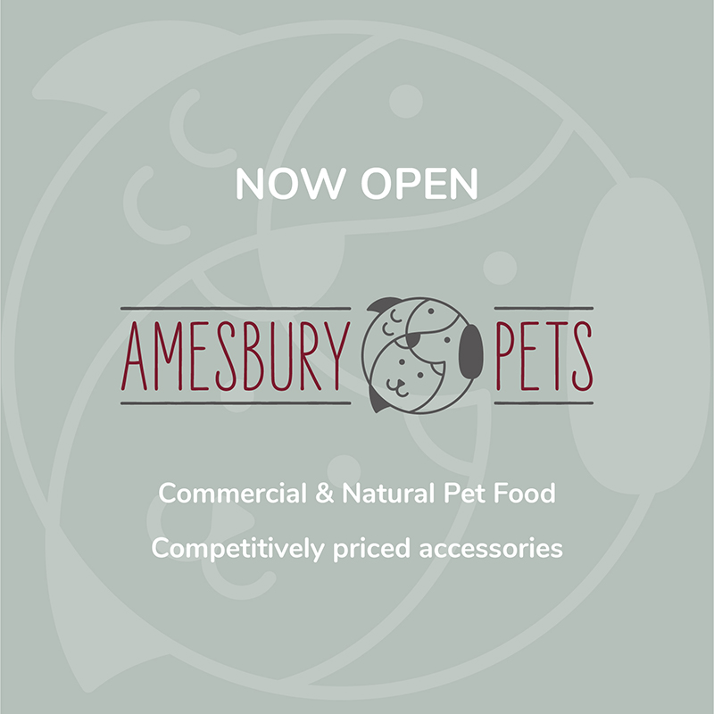 amesbury graphic design agency