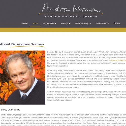 andrew norman seo agency